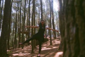 Mangunan Pine Forest, Jogjakarta   Indonesia Travel